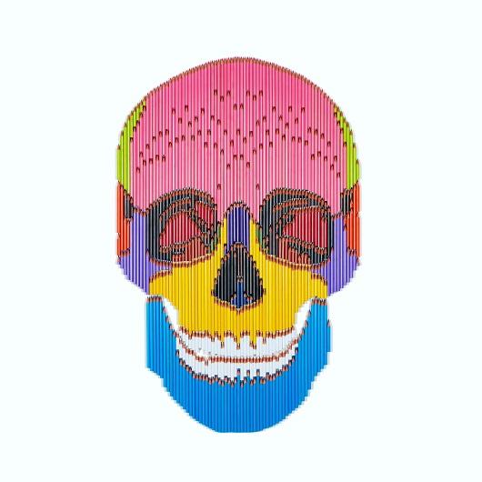 Skull 1 2020 124x88cm assemblages crayons 7200Ôé¼
